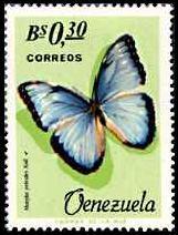 Morpho peleides butterfly, Venezuelan stamp