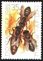 USSR stamp of Honeybee worker, drone, queen