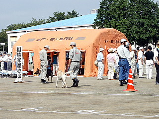 災害救助犬も参加