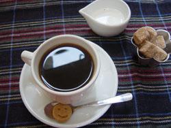 cafe'Lottaでお茶して