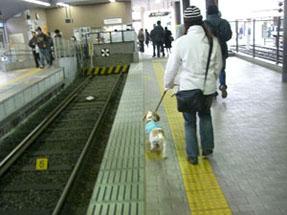世田谷線の駅
