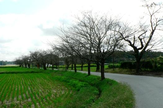 0815 manmou uchihara06