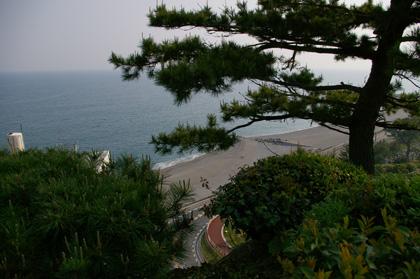桂浜を望む
