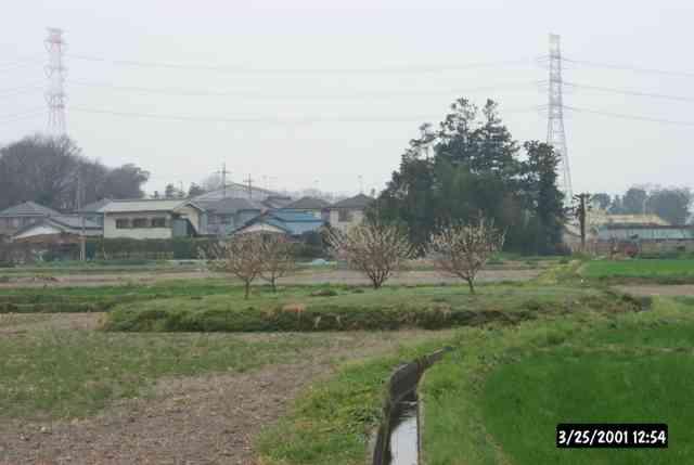 熊谷市の古墳(広瀬古墳群その2)