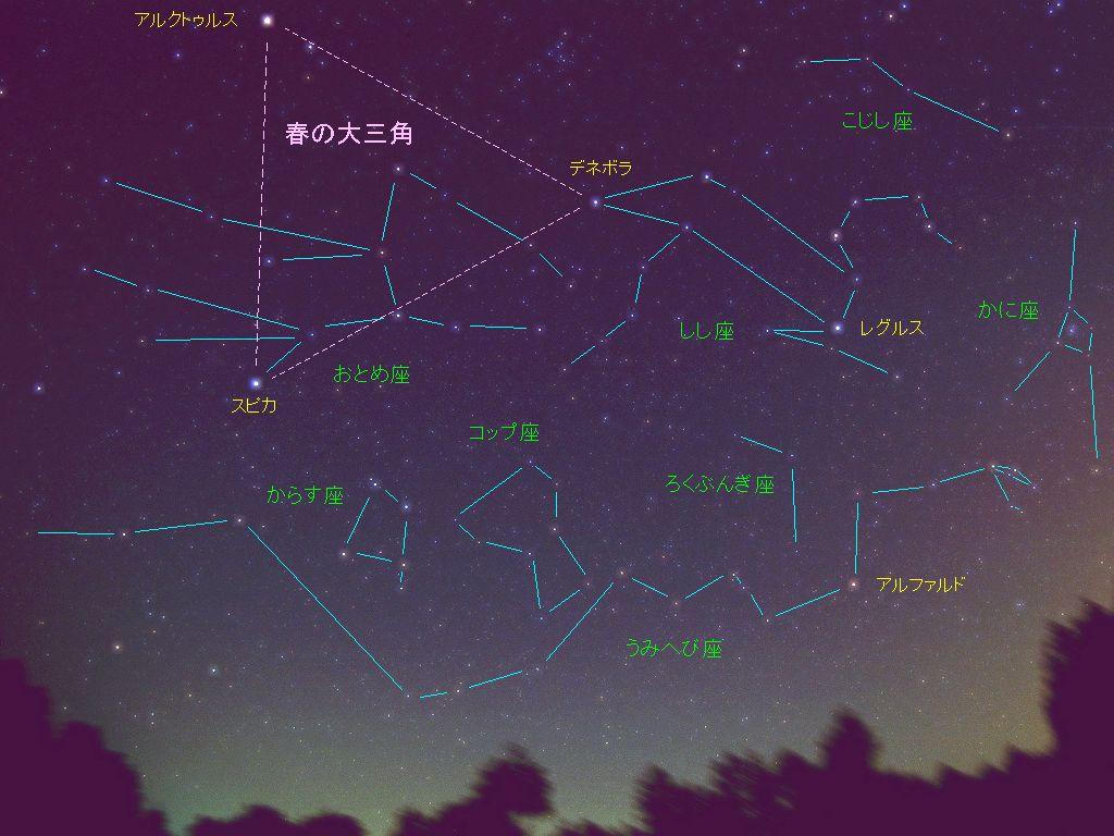 春の南の星座たち